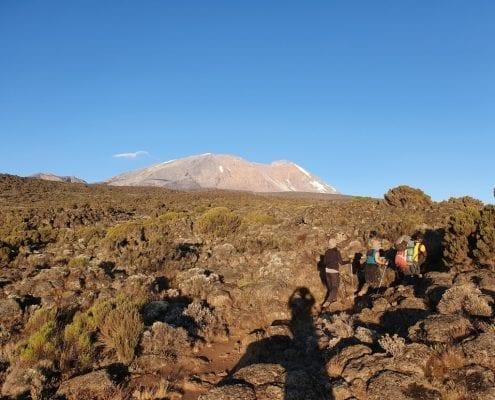 Kilimanjaro landscape shot